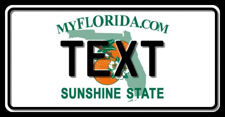 US-Florida My Florida.com Sunshine State, 300x150 mm