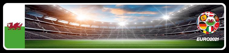 Funschild Fußball EURO EM 2021 Wales, 520x110 mm