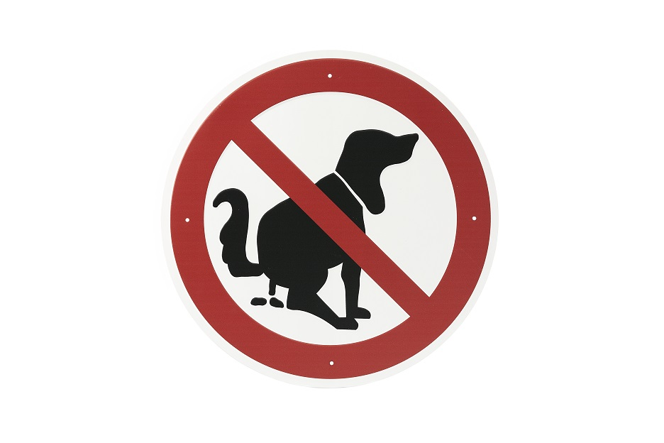 "Hinweisschild ""Kein Hundeklo"""