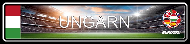 Funschild Fußball EURO EM 2021 Ungarn, bedruckt, 520x110 mm