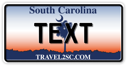 US-South Carolina Palm, 300x150 mm