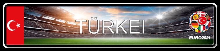Funschild Fußball EURO EM 2021 Türkei, bedruckt, 520x110 mm
