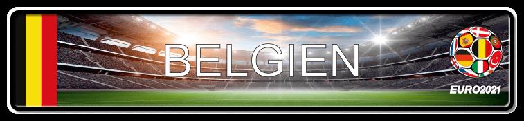 Funschild Fußball EURO EM 2021 Belgien, bedruckt, 520x110 mm