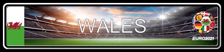 Funschild Fußball EURO EM 2021 Wales, bedruckt, 520x110 mm